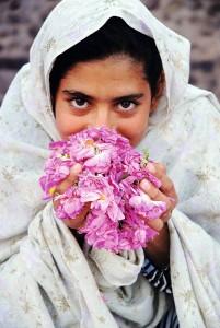 """Die Börlind GmbH unterstützt eine Reihe sozio-ökologischer Projekte, wie etwa die Initiative """"Rosen statt Opium"""" im Iran. Damaszener-Rosen in Bioqualität werden im Iran auf Flächen angebaut, wo früher der Opiumanbau florierte. Foto: ©Börlind GmbH"""