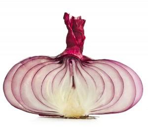 Die Zwiebel wird in der deutschen Küche hochgeschätzt. Das zeigt der jährliche Pro-Kopf-Verbrauch von rund acht Kilogramm.  Foto: ©depositphotos.com/Madllen